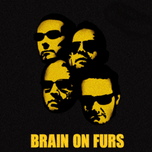 brain on furs