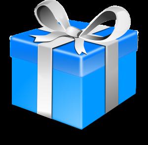 present-308373_960_720